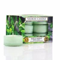 Boite De 12 Lumignons Wild Mint / Menthe Sauvage Yankee Candle