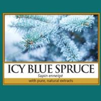 Icy Blue Spruce / Sapin enneigé