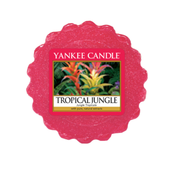 Tartelette Tropicale Jungle Yankee Candle