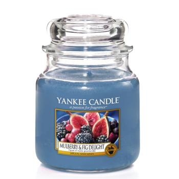 Moyenne Jarre Mulberry & Fig Delight Yankee Candle