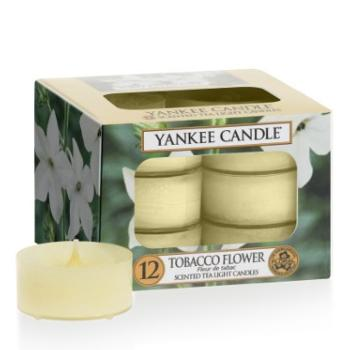 Boite De 12 Lumignons Tobacco Flower Yankee Candle