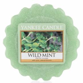 Tartelette Wild Mint / Menthe Sauvage Yankee Candle
