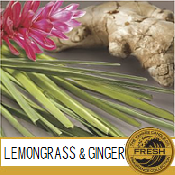 Lemongrass & Ginger / Citronnelle et Gingembre